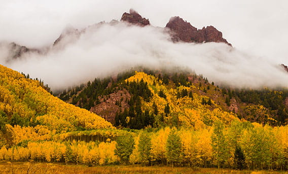 Maroon Bells with fall leaves