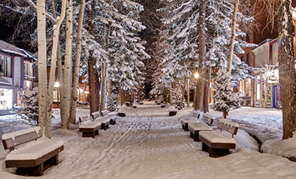 aspen holiday town nell