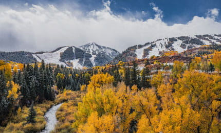 Fall beauty in Aspen Colorado